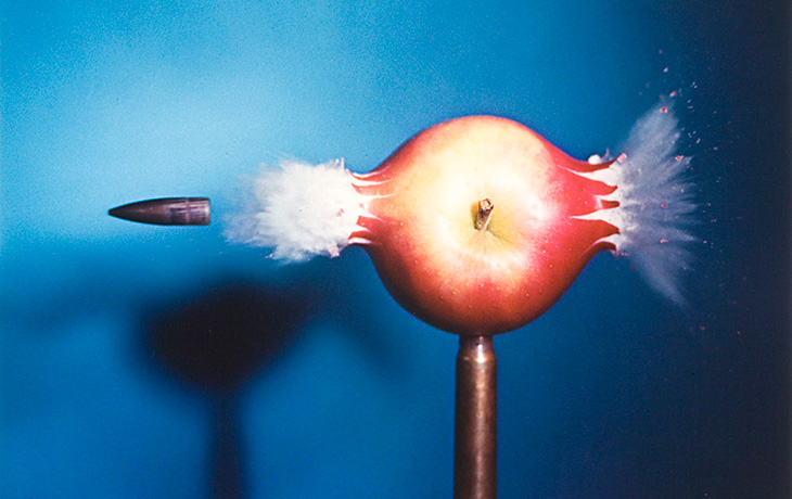 Detail: How to Make Applesauce at M.I.T. .30-caliber Bullet by Dr. Harold Eugene Edgerton