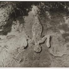 "<a href=""https://spencerartapps.ku.edu/collection-search#/object/18407"" target=""_blank""><i>untitled</i> by Ana Mendieta</a>"