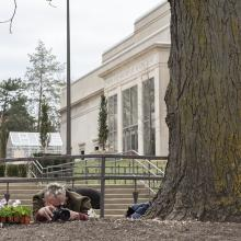 Artist Paul Hartfleet takes a photo of a planted pansy in front of the Spencer Museum of Art